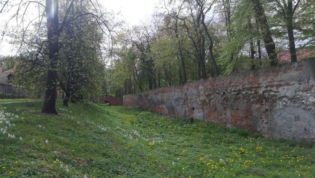 park dzikowski w Tarnobrzegu