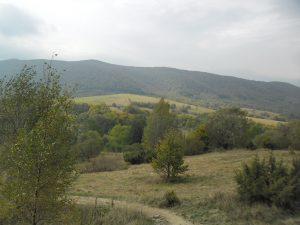 Park narodowy w Bieszczadach